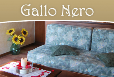 gallo-nero-box